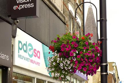 Hanging Basket outside PDSA, Barnet