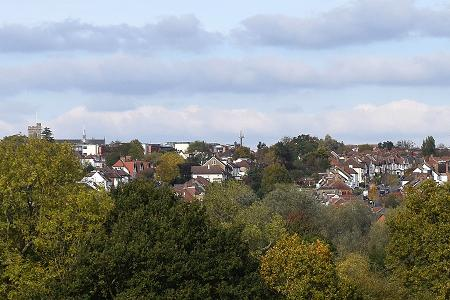 more trees with houses in the distance and the church tower